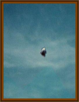 Mushroom Flying Over Yarra Valley