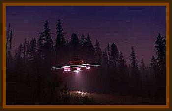 Edward Hunter Reserve UFO